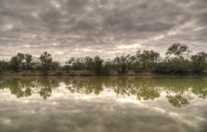 the mighty Murray River at Waikerie (click photo to enlarge)